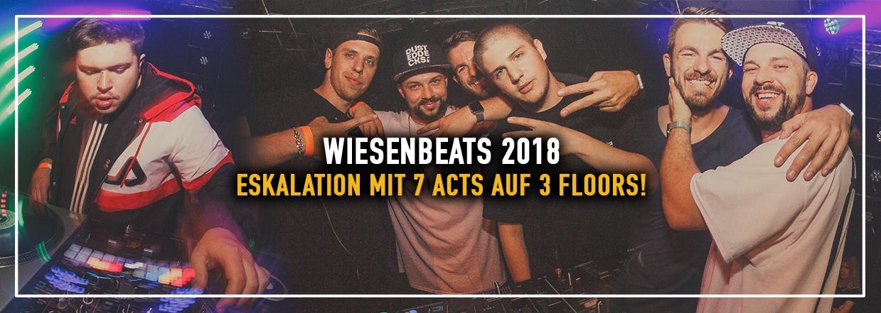 Wiesenbeasts 2018 – 7 Acts auf 3 Floors